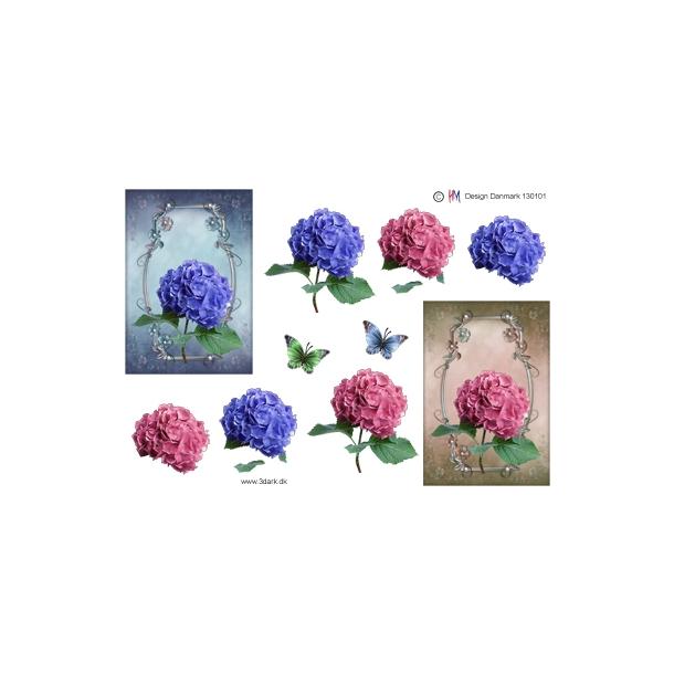 3D ark. Hortensia blomst