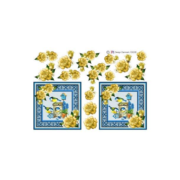 Blåmejse i firkant med gule roser