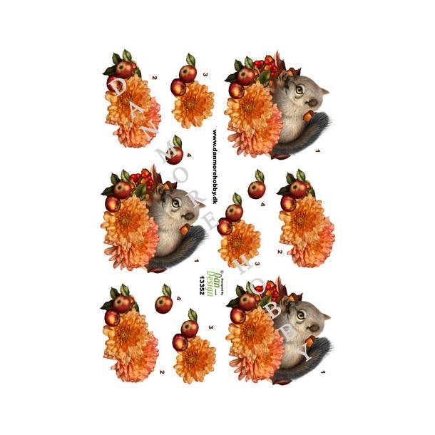 3D ark egern der spiser nødder